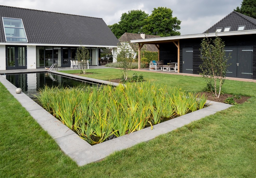 Landelijke tuin met zwemvijver en overkapping in Diepenveen 9