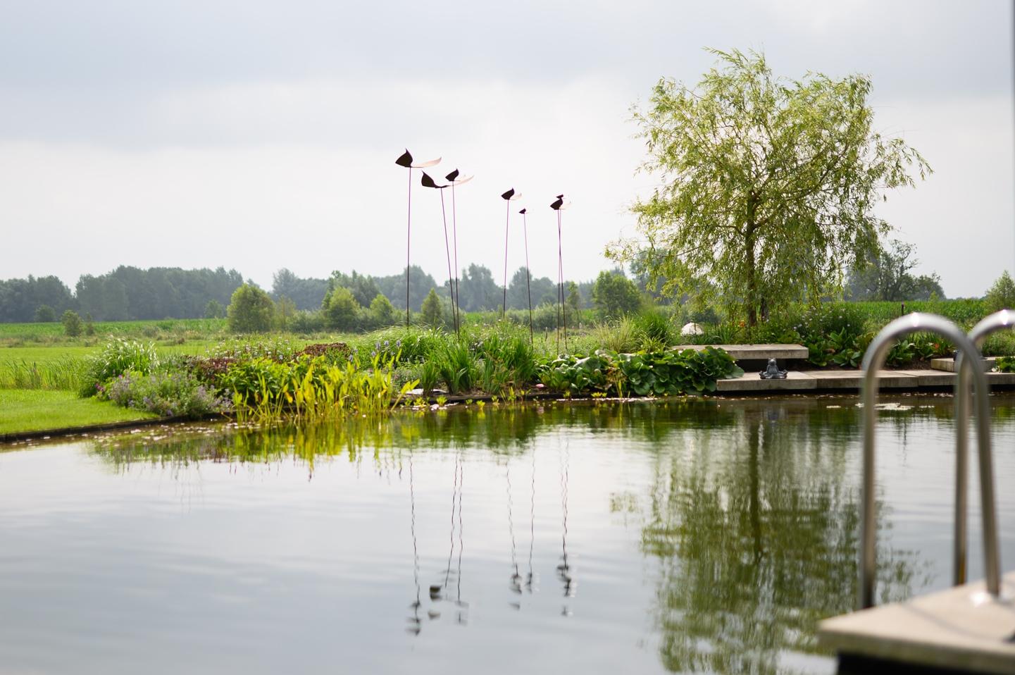 Natuurlijke zwemvijver Nijbroek 14