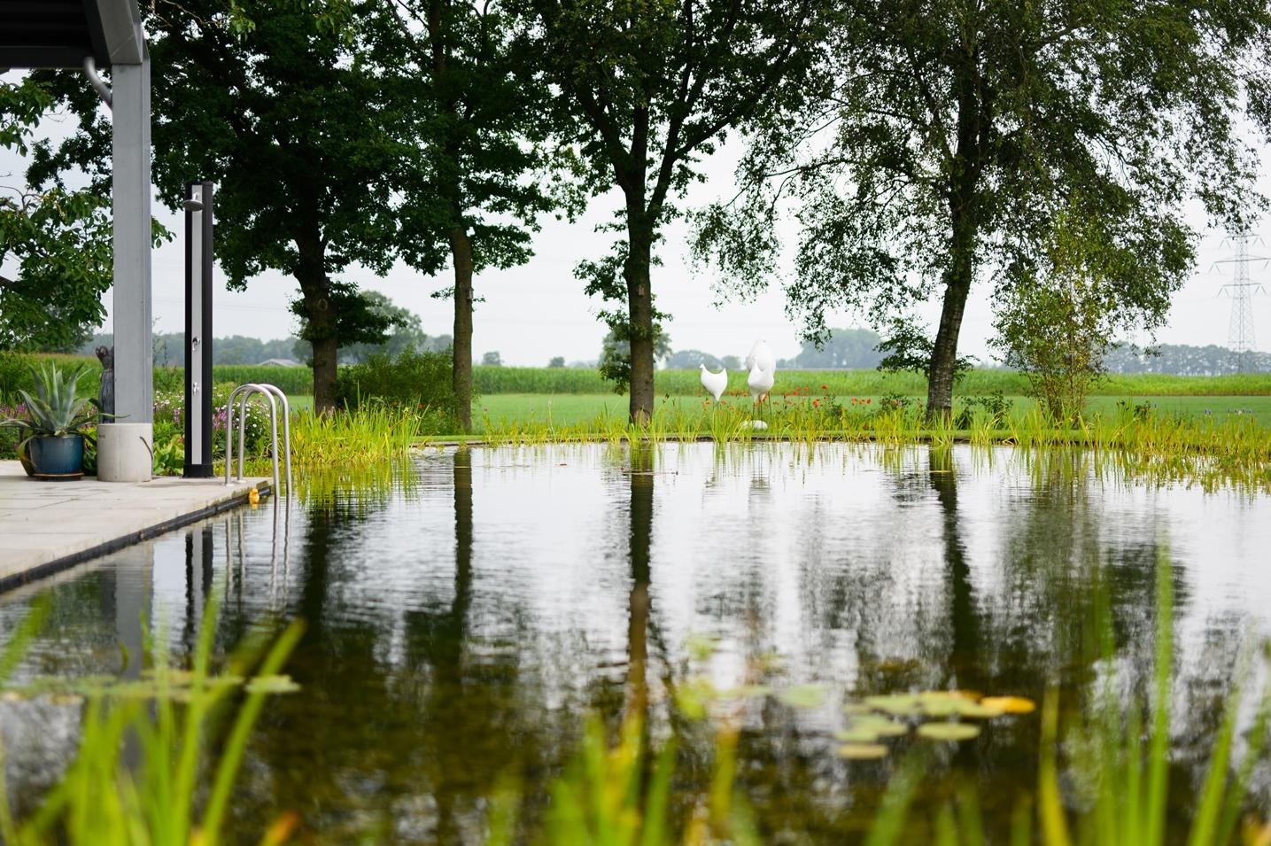 Natuurlijke zwemvijver Nijbroek 18