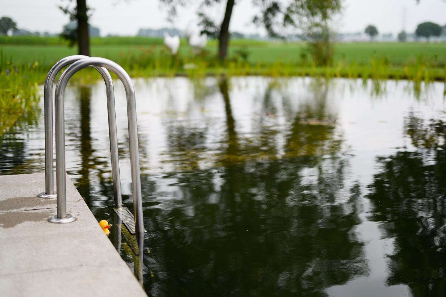 Natuurlijke zwemvijver Nijbroek 20