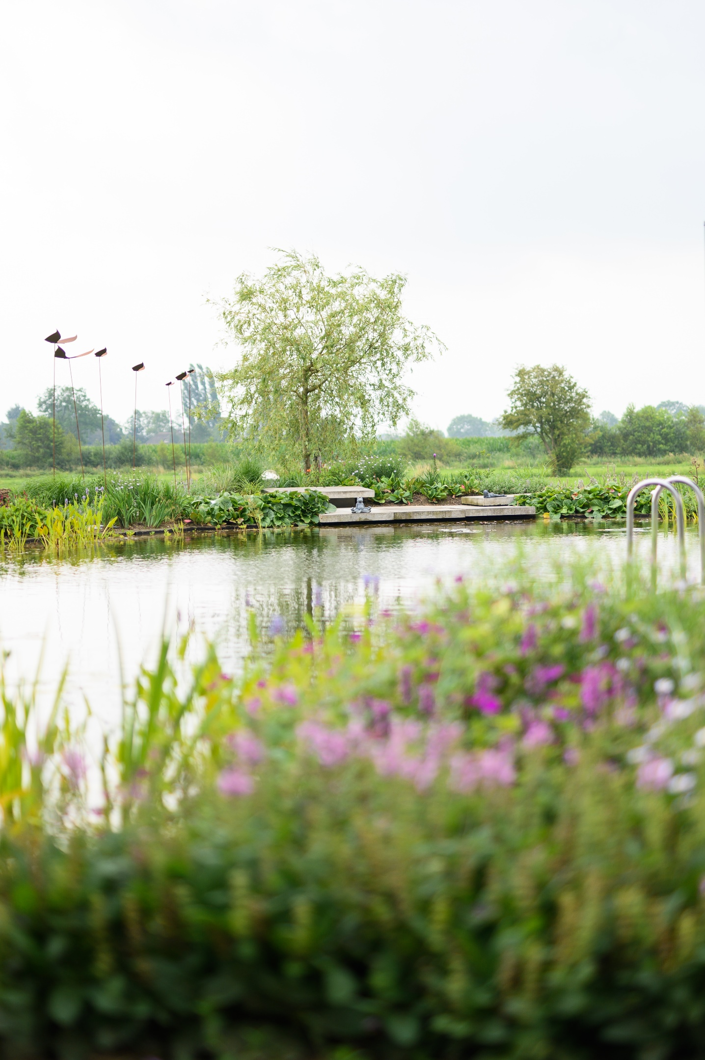 Natuurlijke zwemvijver Nijbroek 6
