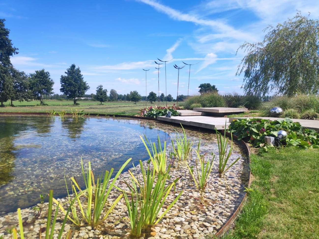 Zwem vijver aanleg Nijbroek