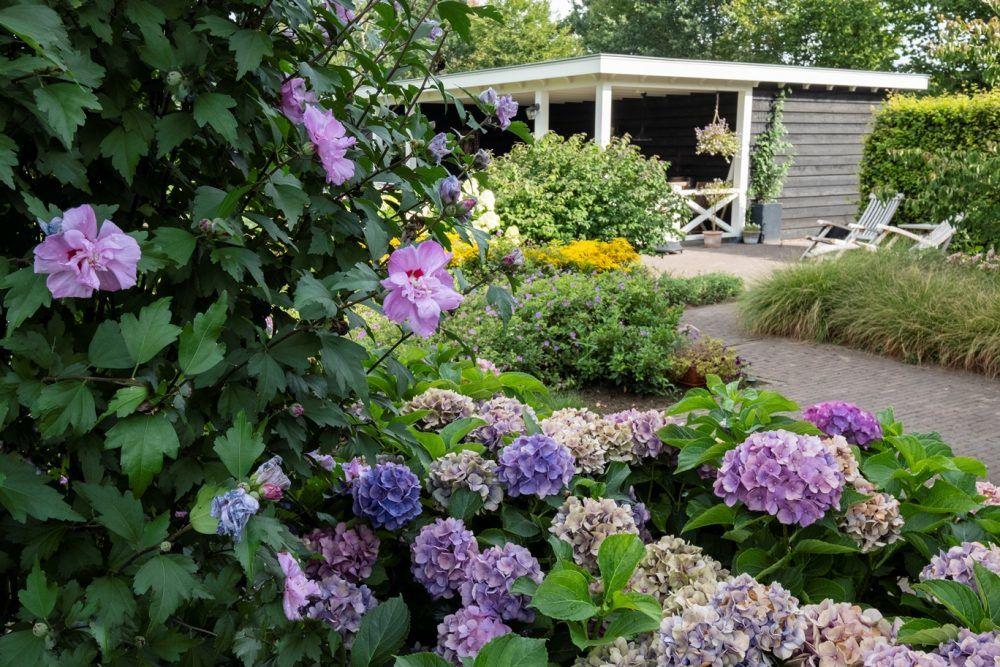 Ontwerp en aanleg landelijke tuin in Epe 11