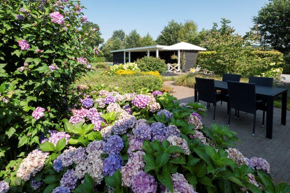 Ontwerp en aanleg landelijke tuin in Epe 5
