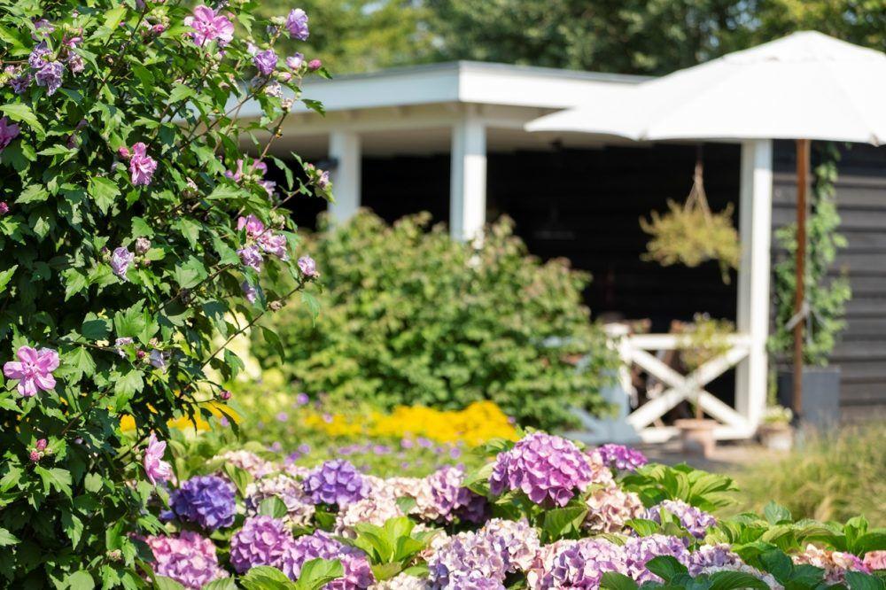 Ontwerp en aanleg landelijke tuin in Epe 7