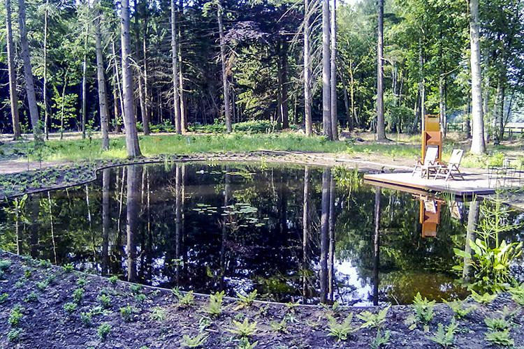 Bostuin met vijver laten aanleggen in Epe
