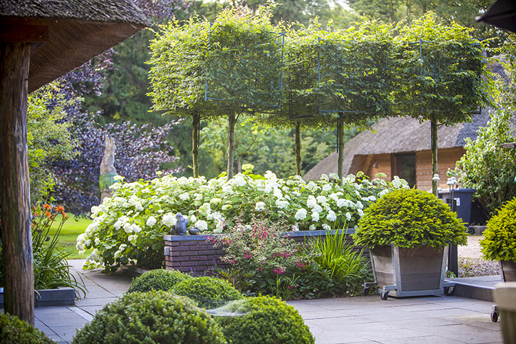 Landelijke tuin aanleg in Vaassen