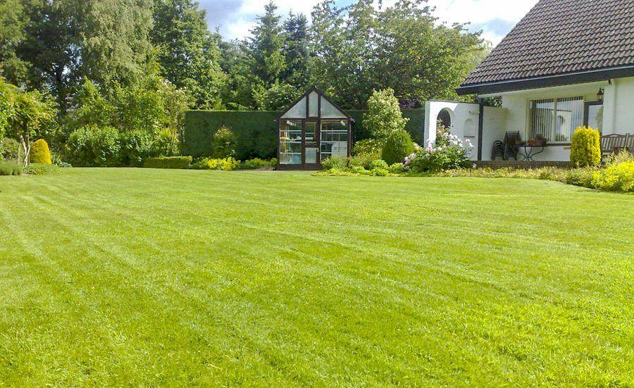 Gazononderhoud met een tuin onderhoudsabonnement Vos Tuinvisie