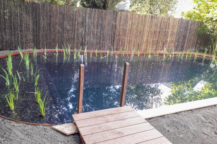 Zwemvijver Apeldoorn tuinfoto