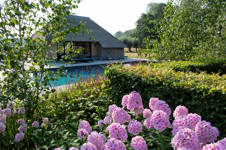 Landelijke tuin aanleg Zwolle