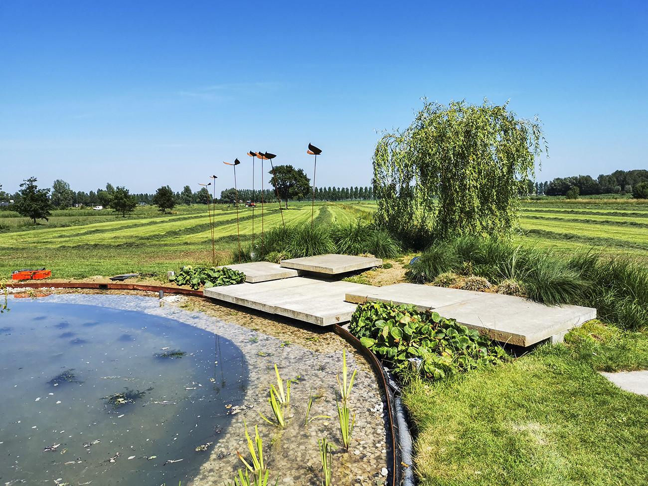 Zwemvijver aanleggen in tuin Nijbroek