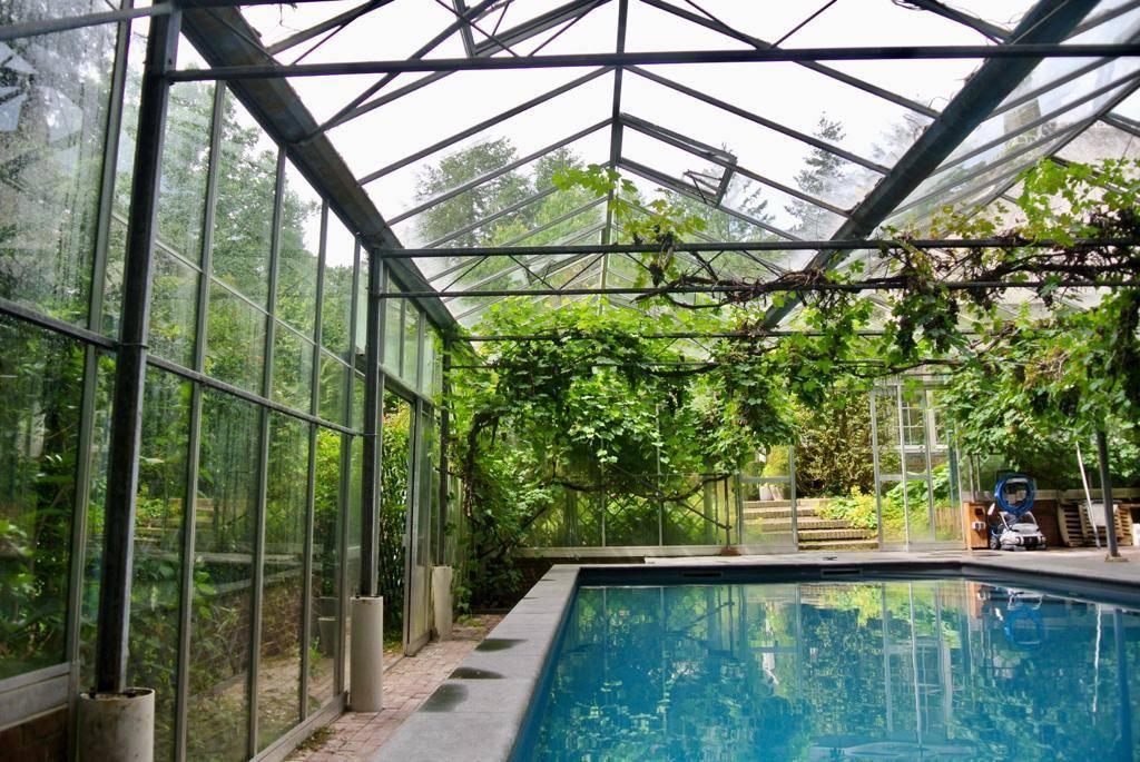 Overdekt zwembad in kas in Hattem