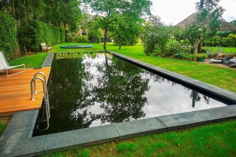 Zwemvijver Diepeveen Vos Tuinvisie